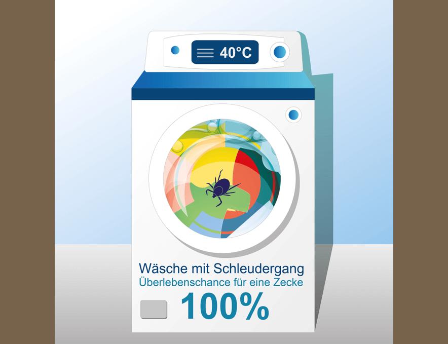 Zecken bei 40 Grad Wäsche sterben nicht